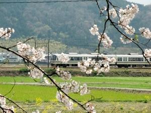 20100411-0.JPG