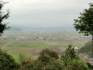 20100411-3.JPG