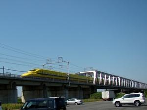 20100605-3.JPG
