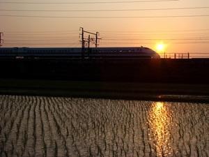 20100611-2.JPG